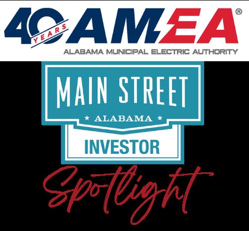 AMEA Investor logo